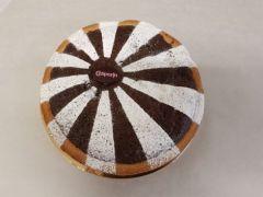 Aprikosen-Schoggi Torte